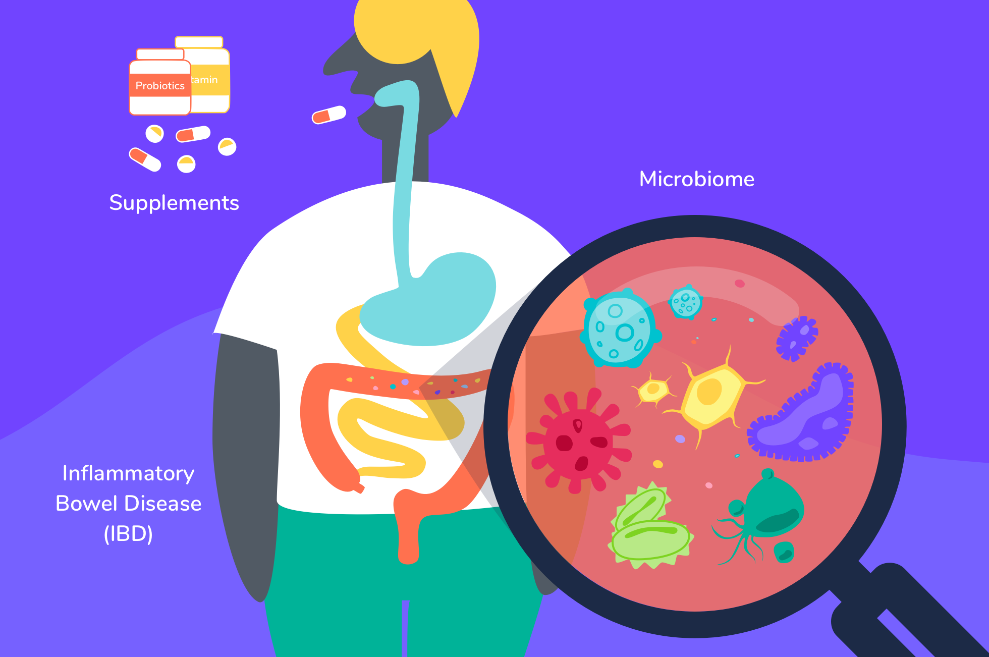 ibd-supplements-microbiome